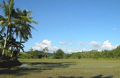 A typical farmland in Samar